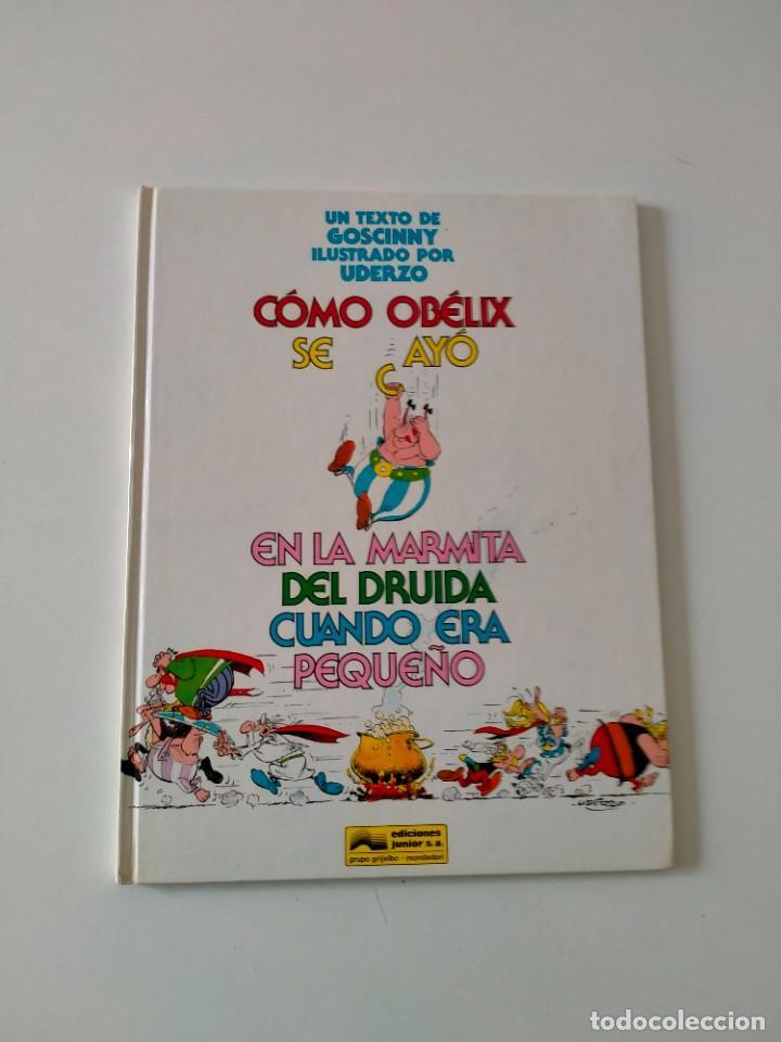 ASTÉRIX CÓMO OBÉLIX SE CAYÓ EN LA MARMITA DEL DRUIDA EDICIONES JUNIOR AÑO 1993 (Tebeos y Comics - Grijalbo - Asterix)