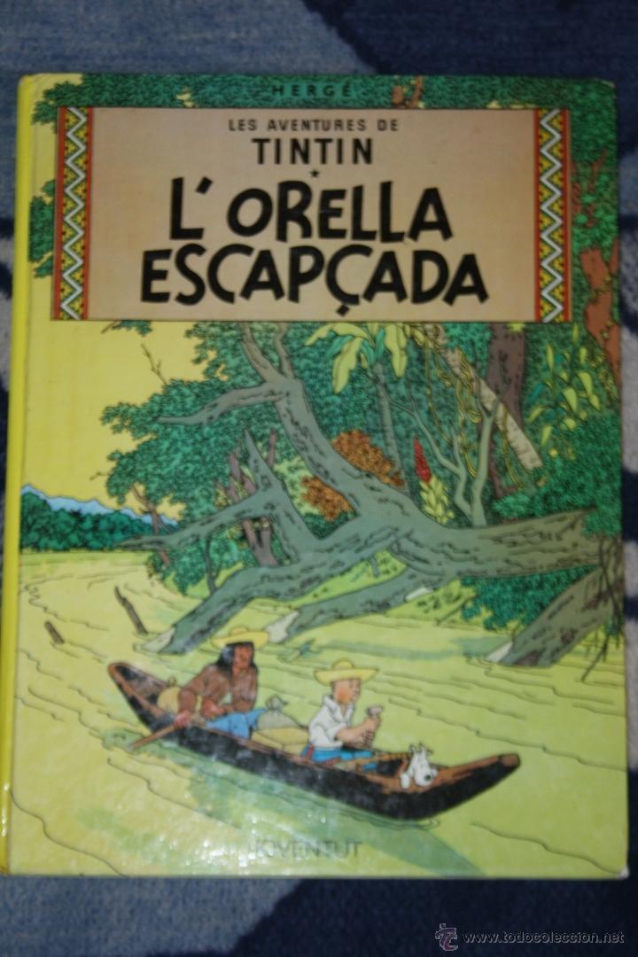 TINTIN L'ORELLA ESCAPÇADA JOVENTUD (Tebeos y Comics - Juventud - Tintín)