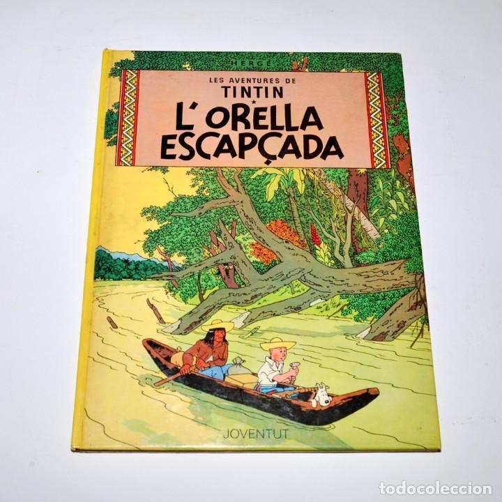 TINTIN - L'ORELLA ESCAPÇADA - ED. JUVENTUD 1985 (Tebeos y Comics - Juventud - Tintín)