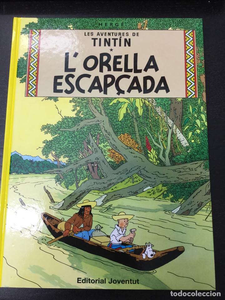 TINTÍN 6. L'ORELLA ESCAPÇADA - JOVENTUT - EDICIÓ ACTUAL NUMERADA (CATALÀ) (Tebeos y Comics - Juventud - Tintín)