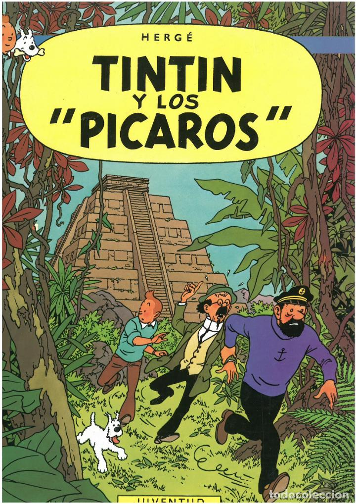 TINTIN Y LOS PICAROS. JUVENTUD. C-35 (Tebeos y Comics - Juventud - Otros)