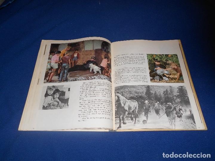 Cómics: Tintín y las naranjas azules Juventud primera edición Herge 1970 MUY BUE ESTADO - Foto 6 - 182277590