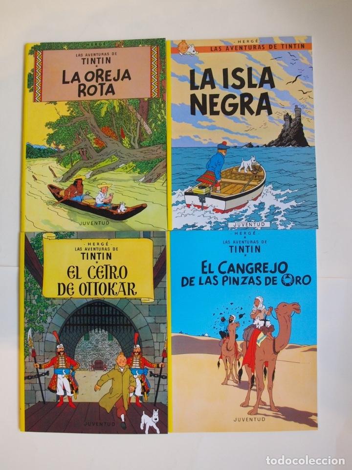 Cómics: COLECCIÓN COMPLETA DE TINTIN - 23 ÁLBUMES EN RÚSTICA (TAPA BLANDA) - EDITORIAL JUVENTUD - Foto 3 - 182380467