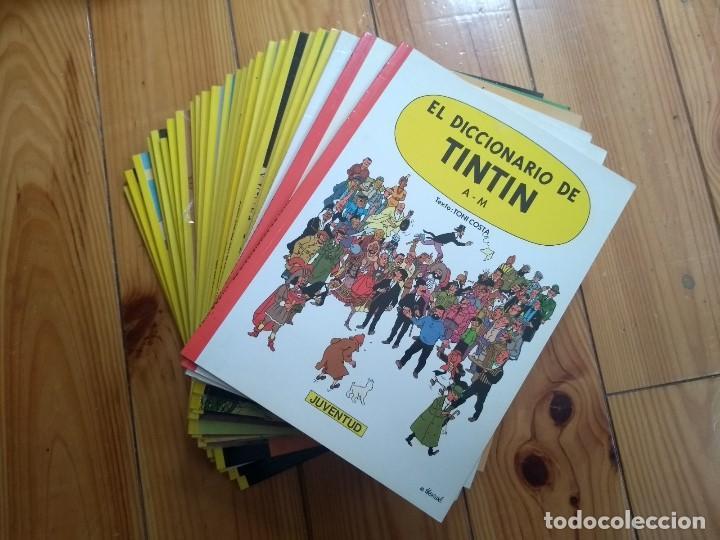 COLECCIÓN COMPLETA TINTÍN RÚSTICA + MUSEO IMAGINARIO + EL DICCIONARIO DE TINTÍN (Tebeos y Comics - Juventud - Tintín)