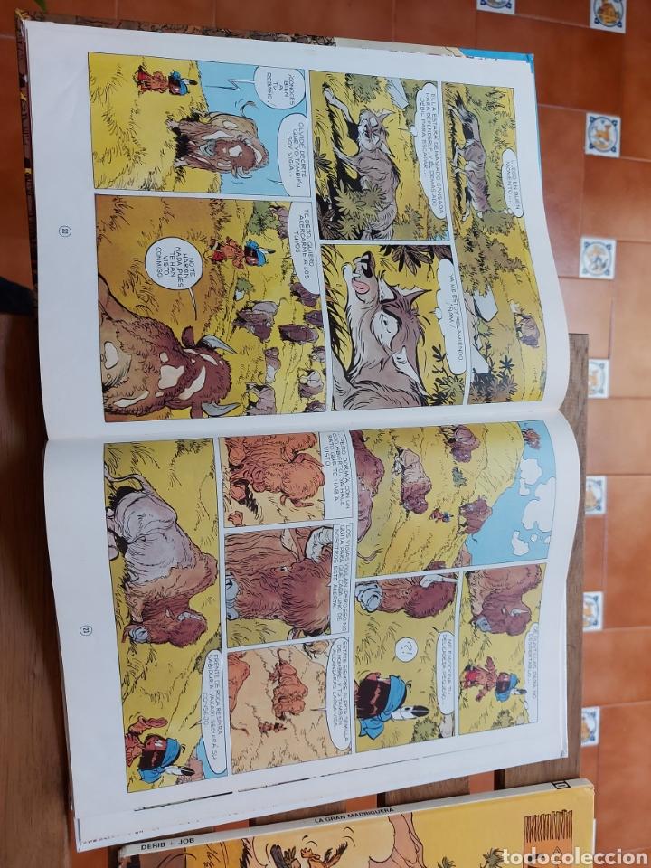Cómics: YAKARI LOTE DE 2 COMIC (LOS SEÑORES DE LA PRADERA)Y (LA GRAN MADRIGUERA) JUVENTUD DERIB + JOB - Foto 13 - 213873986