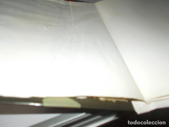 Cómics: LAS AVENTURAS DEL PROFESOR PALMERA El misterio de la planta tako - Foto 5 - 216373973