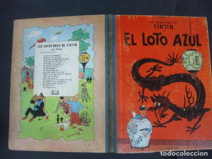 LAS AVENTURAS DE TINTIN. HERGE. EL LOTO AZUL EDITORIAL JUVENTUD 1ª EDICION 1965 (Tebeos y Comics - Juventud - Tintín)