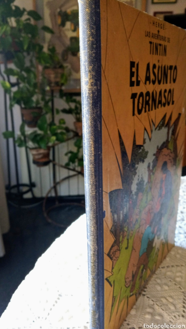 Cómics: TINTÍN EL ASUNTO TORNASOL —HERGÉ— EDITORIAL JUVENTUD PRIMERA EDICIÓN - Foto 5 - 221948565