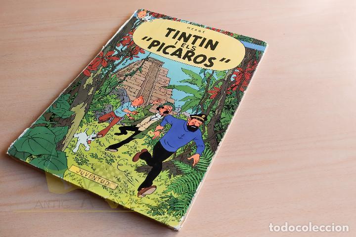 TINTIN I ELS PICAROS - LES AVENTURES DE TINTIN - 1976 - 1ERA EDICIÓ - EN CATALÀ (Tebeos y Comics - Juventud - Tintín)