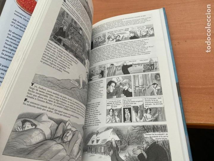 Cómics: GEMMA BOVERY (POSY SIMONS) DESTINO (COIB193) - Foto 2 - 243862320