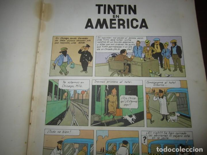 Cómics: LAS AVENTURAS DE TINTIN -TINTIN EN AMERICA --HERGE 1968 BARCELONA 1º EDICION - Foto 5 - 269172743