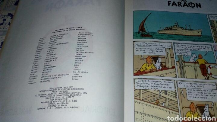 Cómics: TINTIN - LOS CIGARROS DEL FARAON. JUVENTUD. 5ª EDICION. 1977. TAPA DURA. LOMO BLANCO. - Foto 2 - 278626118