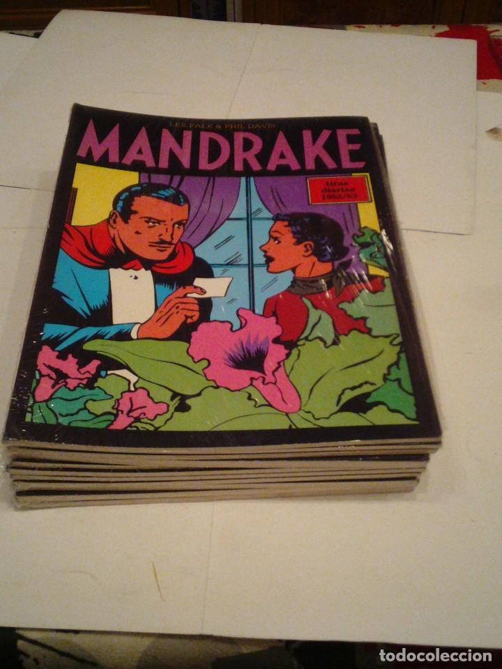 Cómics: LOTE DE 17 NUMEROS DE TIRAS DIARIAS DE MANDRAKE - EUROCLUB MAGERIT - NUEVOS - GORBAUD - Foto 13 - 119326583