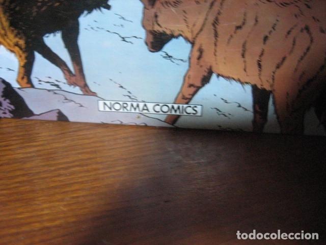 Cómics: ALIX - JACQUES MARTIN - PRIMERA EDICION OIKOS TAU Y NORMA 9 tomos( DE 10 COLECCION COMPLETA )OFERTA - Foto 16 - 126924447