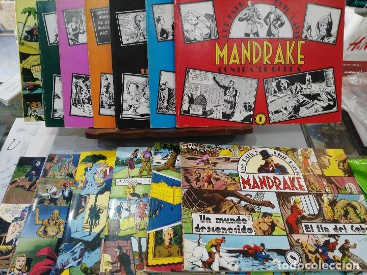 MANDRAKE - 13 NÚMEROS, COLECCIÓN COMPLETA - LEE FALK & PHIL DAVIS - ED. JOAQUÍN ESTEVE (Tebeos y Comics - Magerit - Mandrake)