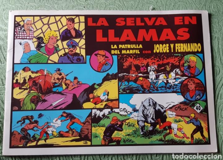 TEBEOS-COMICS GOYO - JORGE Y FERNANDO 40 - LA PATRULLA DEL MARFIL - MAGERIT - AA98 (Tebeos y Comics - Magerit - Jorge y Fernando)