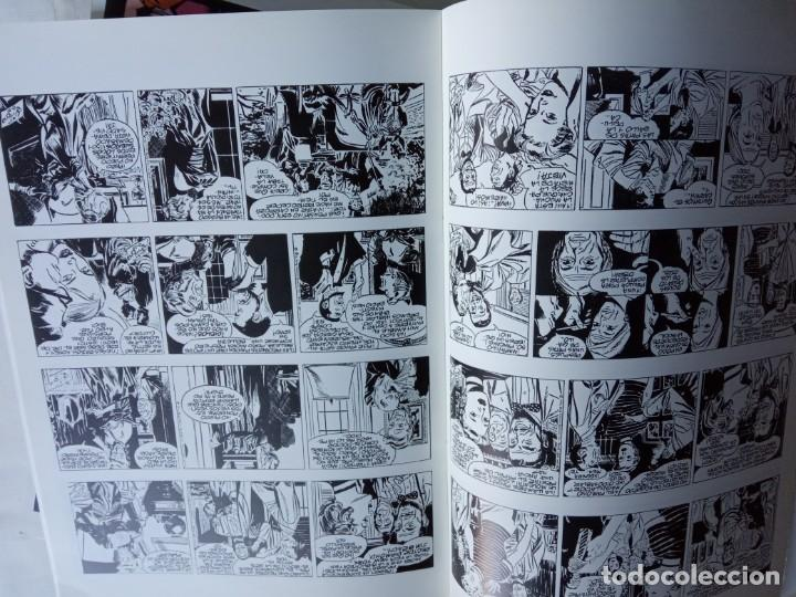 Cómics: LOTE Colección RIP KIRBY. Alex Raymond. Euroclub Magerit 1996. 24 títulos.(DEL 13 AL 36 AMBOS INCL.) - Foto 2 - 215186358