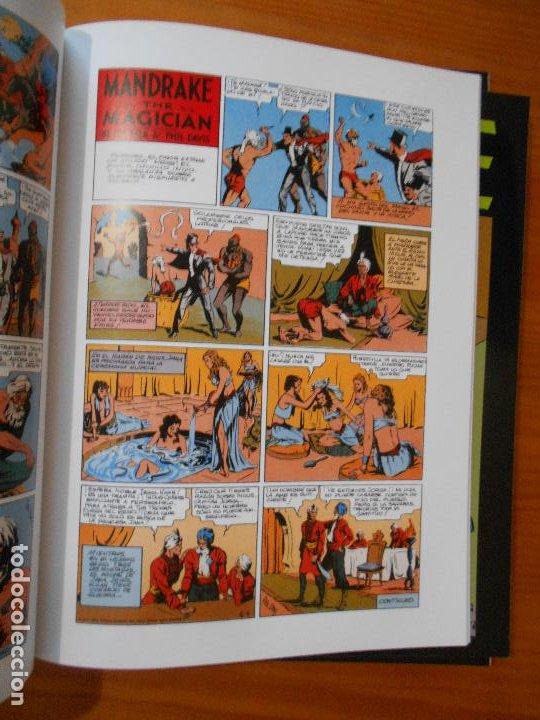 Cómics: MANDRAKE PAGINAS DOMINICALES COMPLETA - 5 TOMOS - LEE FALK & PHIL DAVIS - MAGERIT (CC) - Foto 5 - 176239997