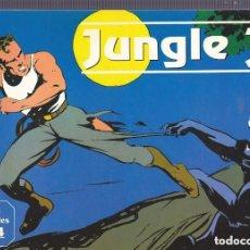 Cómics: JUNGLE JIM (JIM DE LA JUNGLA) DE ALEX RAYMOND MAGERIT COMPLETA 20 EJEMPLARES. Lote 261134985