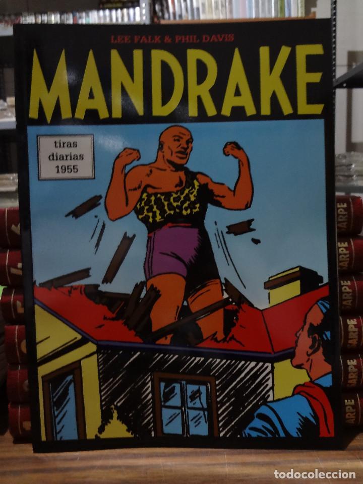 MANDRAKE TIRAS DIARIAS 1955 - LEE FALK & PHIL DAVIS - EUROCLUB MAGERIT - TOMO 36 (Tebeos y Comics - Magerit - Mandrake)