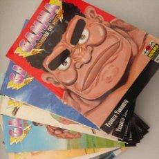 Cómics: COLECCION COMPLETA/GAMMA EL HOMBRE DE HIERRO/YASUHITO YAMAMOTO/NORMA.. Lote 216703216