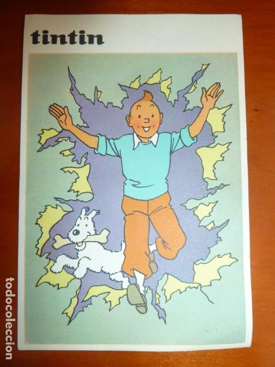 Cómics: tintin postal original antigua editorial juventud perfecto estado - Foto 2 - 168802368