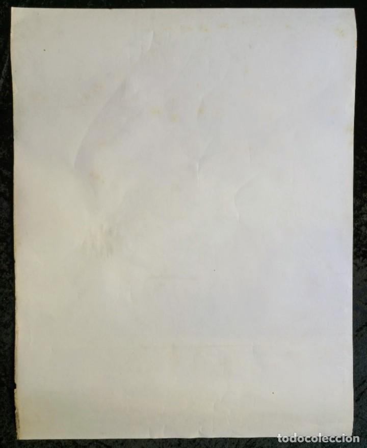 Cómics: CARTEL POSTER - THE BATTLER - NEAL ADAMS - 57,5x46 cm - 1977 SAL QUARTUCCIO - Foto 4 - 251125015
