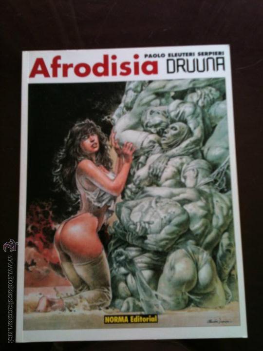 Afrodisia De Paolo Eleuteri Serpieri Coleccion Drunna No 6 Publicada En Abril 1 998