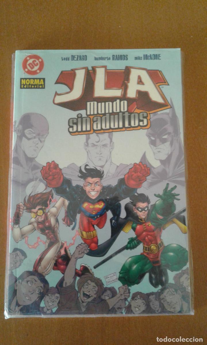 JLA : MUNDO SIN ADULTOS ( NORMA EDITORIAL ) (Tebeos y Comics - Norma - Comic USA)