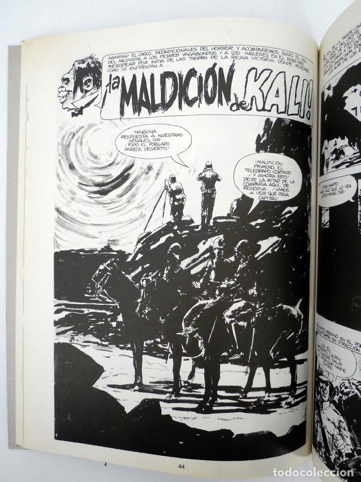 Cómics: JOYAS DEL CREEPY LAS MEJORES HISTORIAS DE VAMPIROS 2 (Ditko, Adams, Colan, etc) Toutain, 1991. OFRT - Foto 11 - 211433629