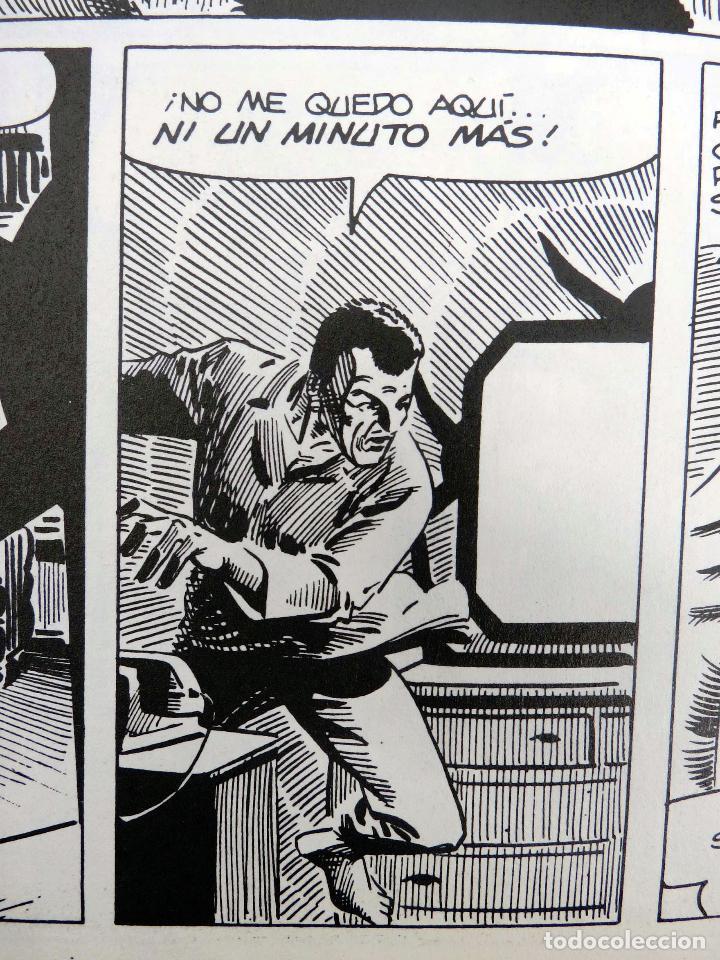Cómics: JOYAS DEL CREEPY LAS MEJORES HISTORIAS DE VAMPIROS 2 (Ditko, Adams, Colan, etc) Toutain, 1991. OFRT - Foto 2 - 211433629
