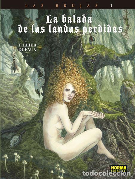 CÓMICS. LA BALADA DE LAS LANDAS PERDIDAS 9. CABEZA NEGRA -TILLIER/JEAN DUFAUX (CARTONÉ) (Tebeos y Comics - Norma - Comic Europeo)