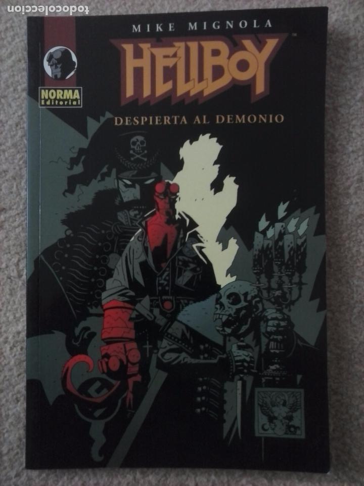 Cómics: HELLBOY 3 NºS - SEMILLA DE DESTRUCCION, DESPIERTA EL DEMONIO,EL ATAÚD ENCADENADO Y OTRAS HISTORIAS - Foto 3 - 102593275