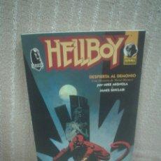 Cómics: HELLBOY - DESPIERTA AL DEMONIO - TAPA BLANDA (MBE). Lote 104687131