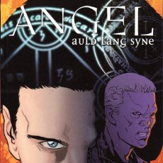 Cómics: ANGEL: AULD LANG SYNE -SCOTT TIPTON·DAVID MESSINA -MADE IN HELL 67. Lote 111719371