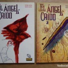 Cómics: EL ÁNGEL CAÍDO 1 Y 2 - PETER DAVID Y DAVID LOPEZ - NORMA DC - JMV. Lote 112612619