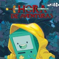 Comics - Cómics. HORA DE AVENTURAS 12 - Hastings/McGinty/Maarta Laiho - 113724591