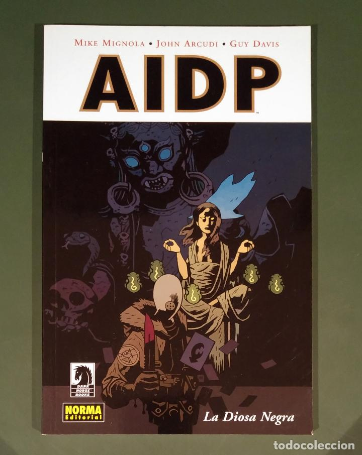 AIDP #11: LA DIOSA NEGRA (DARK HORSE / NORMA) -50% PVP - UNIVERSO HELLBOY - (Tebeos y Comics - Norma - Comic USA)