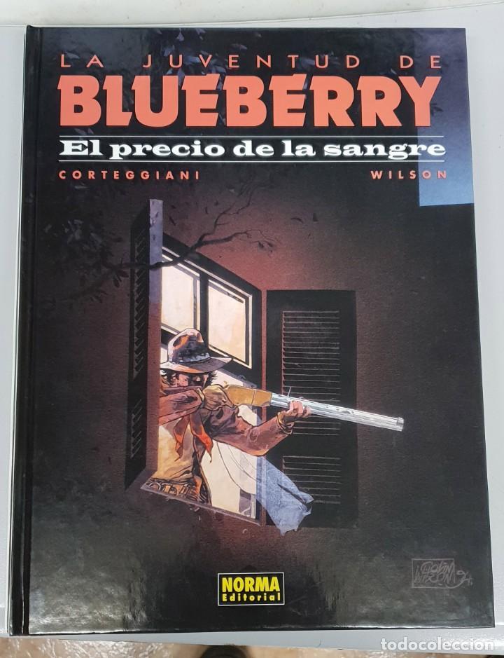 LA JUVENTUD DE BLUEBERRY Nº 34 : EL PRECIO DE LA SANGRE - CORTEGGIANI - BLANC DUMONT / NORMA (Tebeos y Comics - Norma - Comic USA)