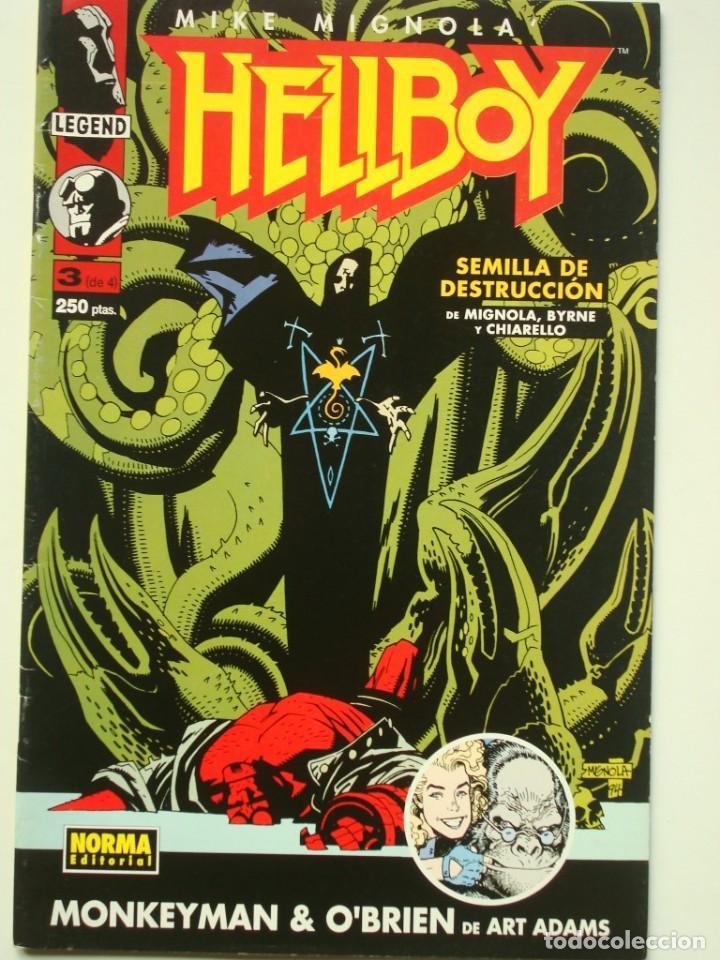 HELLBOY Nº 3 DE 4 (MIKE MIGNOLA'S HELLBOY) NORMA (Tebeos y Comics - Norma - Comic USA)