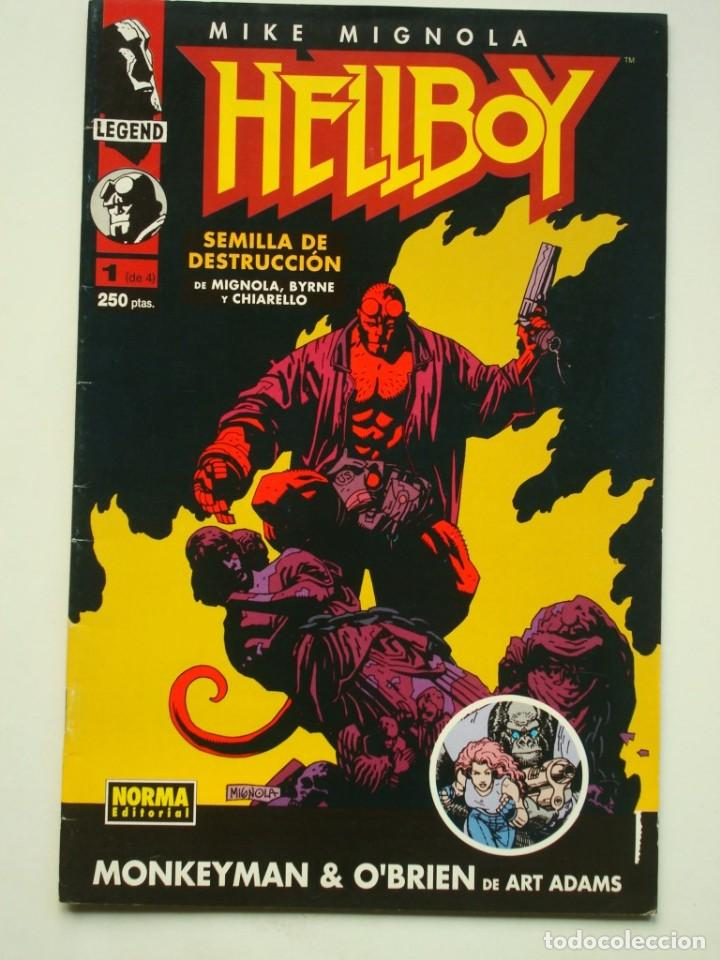 HELLBOY Nº 1 DE 4 (MIKE MIGNOLA'S HELLBOY) NORMA (Tebeos y Comics - Norma - Comic USA)