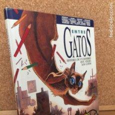 Cómics: ENTRE GATOS. HISTORIA DE UN HOMBRE QUE AMABA LOS GATOS - VV.AA. - NORMA - BUEN ESTADO - GCH. Lote 160160218