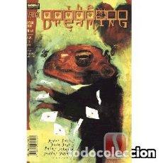 Comics - THE DREAMING: EXTRAÑO AMOR (Nºs. 1 y 2) -- BRYAN TALBOT y PETER DOHERTY - 166315810