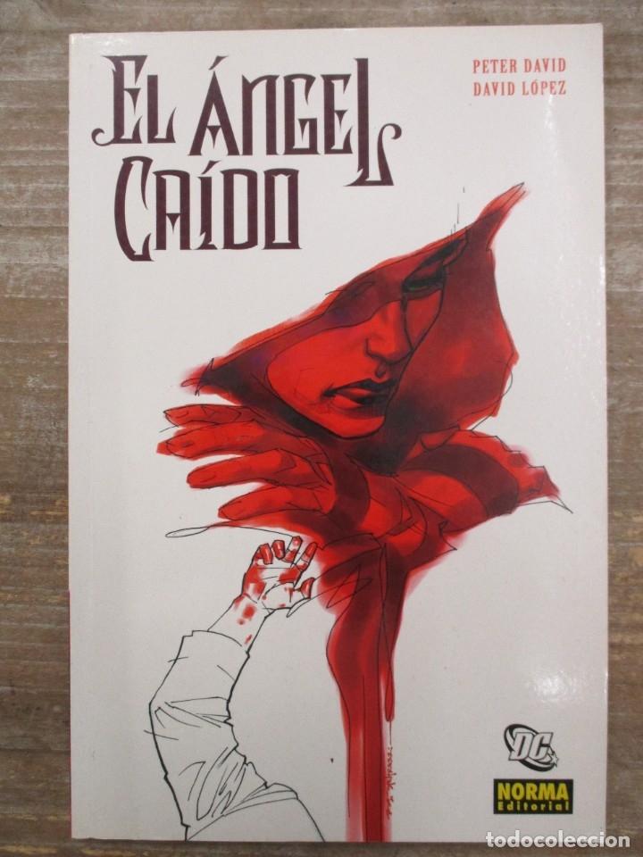 EL ANGEL CAIDO - Nº 1 - PETER DAVID Y DAVID LOPEZ - NORMA EDITORIAL (Tebeos y Comics - Norma - Comic USA)