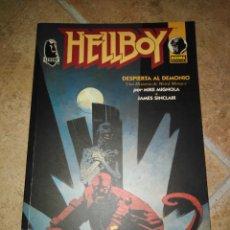 Cómics: HELLBOY. Lote 180258461