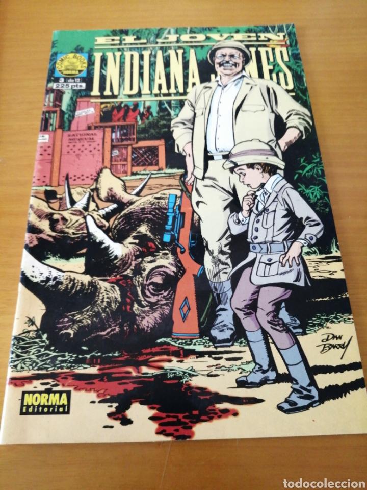 EL JOVEN INDIANA JONES Nº 3 DE 12 (Tebeos y Comics - Norma - Comic USA)