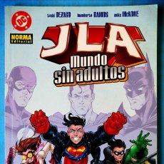 Cómics: JLA - MUNDO SIN ADULTOS - NORMA EDITORIAL ''MUY BUEN ESTADO''. Lote 211420716