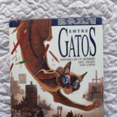 Comics : ENTRE GATOS , HISTORIA DE UN HOMBRE QUE AMABA LOS GATOS, NORMA EDITORIAL. Lote 238201295