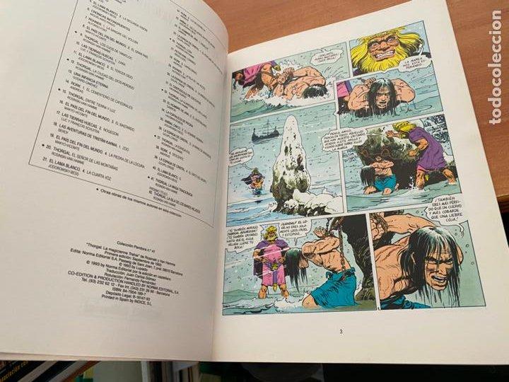 Cómics: THORGAL LA MAGA TRAICIONADA COLECCION PANDORA Nº 41 (COIB193) - Foto 2 - 243638795