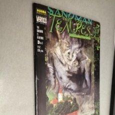 Cómics: THE SANDMAN: EL VELATORIO Nº 3 / VÉRTIGO Nº 27 - NORMA EDITORIAL. Lote 245076030